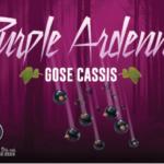 produit-brasserieminne-purple
